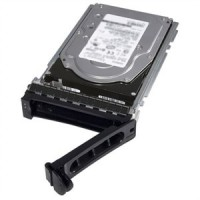 1TB 7.2K RPM SATA 3.5in Hot-plug Hard Drive13GCusKit