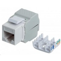 Intellinet Cat6 Keystone Jack, UTP, biely, Tool-less